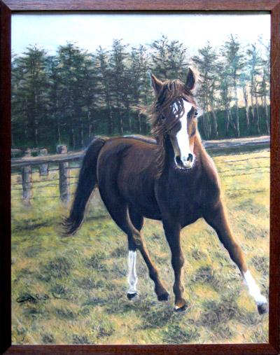 schilderij kitty dieben paard